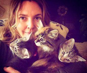 catlover_Drew_Barrymore