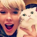 Famosos catlovers que debes conocer