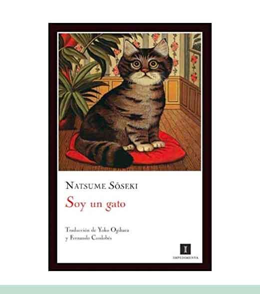 Libros de gato