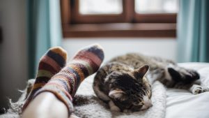 Beneficios de dormir con el michi