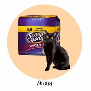 arena para gato