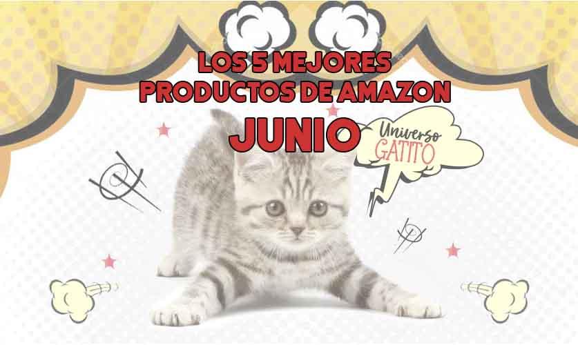 Los 5 mejores productos para gatos de Amazon