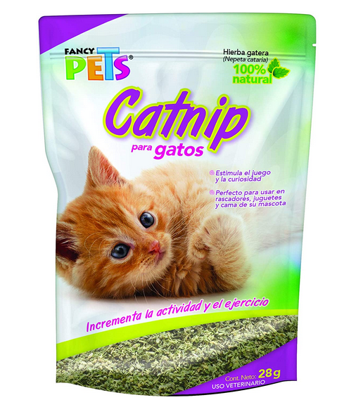 Catnip, la planta que les encanta a los gatos