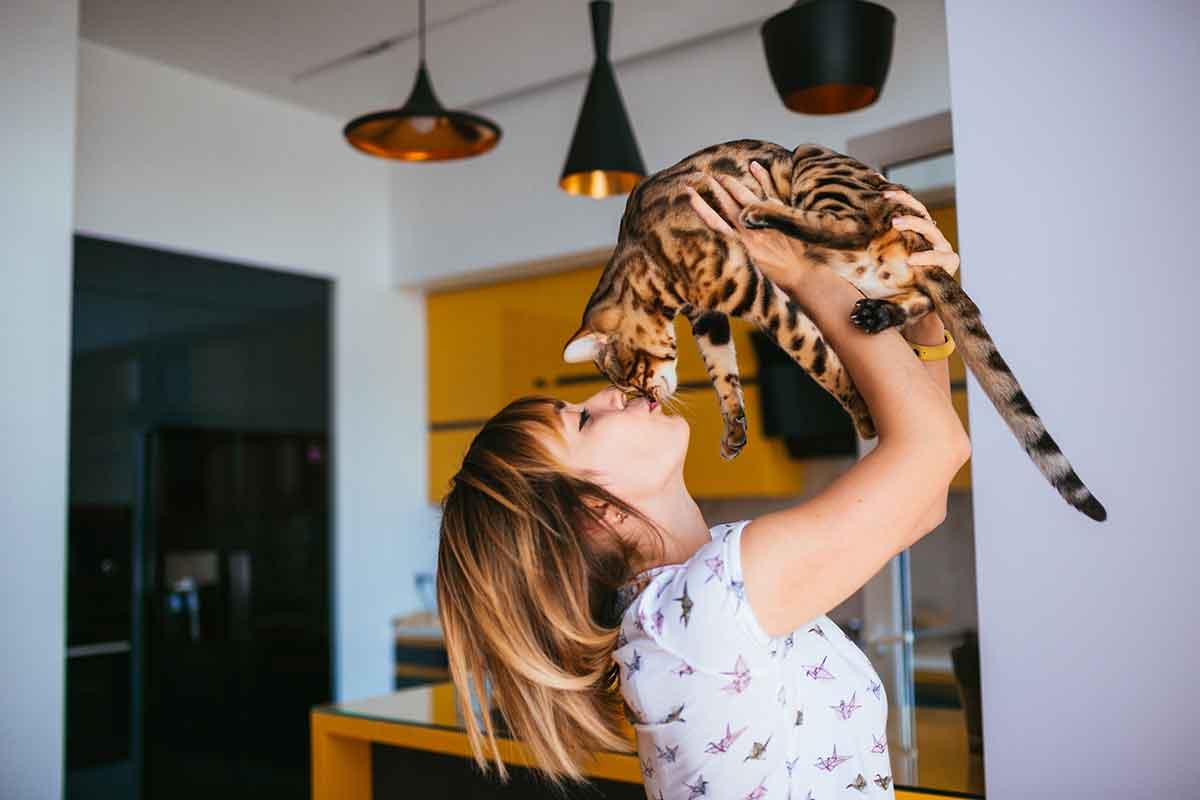 Tips para llevarte bien con tu gato.